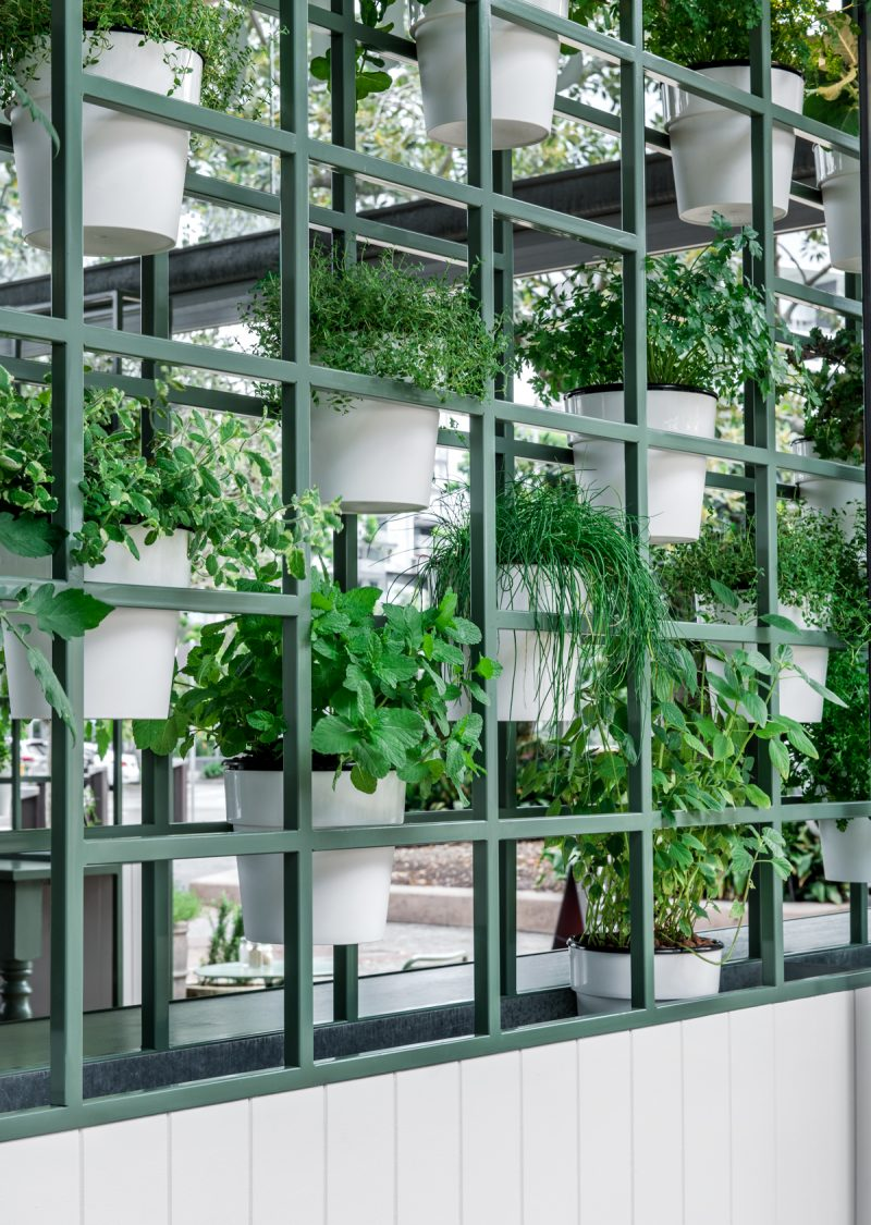 The_Garden_Room_Maytree_Studios_Brisbane_Architects_04